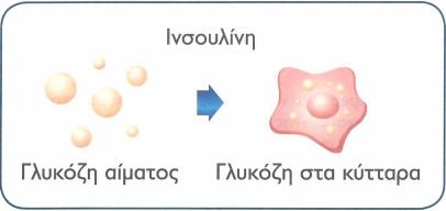 1 insoulini diavitis tipou 2